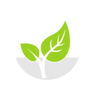 Die Umwelt als Erfolgsfaktor für nachhaltige Unternehmensstrategien.